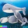 ตุ๊กตา ปลาวาฬ ราคา 290-490 บาท