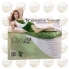 Cho12 โช ทเวลฟ์ อาหารเสริมสูตรลดน้ำหนัก ใหม่ล่าสุด ของเนย โช หุ่นสวย ส่งฟรีEMS