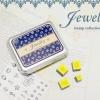 ชุดตัวปั้ม - Jewelry (DIY)