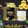 ครีมน้ำผึ้งป่า B'Secret Forest Honey Bee Cream 15 กรัม