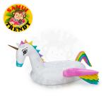 Pegasus Rainbow Wing