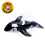 Jumbo Whale