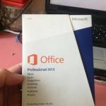 Microsoft Office Professional 2013 1User (FPP)