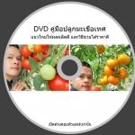 DVD TOMATO วิธีปลูกมะเขือเทศแบบใหม่