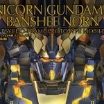PG 1/60 Banshee Norn