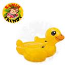 Yellow Duck Intex