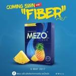 MEZO FIBER เมโซ ไฟเบอร์ เจ้าแม่ ดีท็อกซ์ไขมัน ล้างลำไส้ ขับของเสีย ล้างสารพิษ