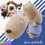 ตุ๊กตา สุนัขใส่เสื้อ ราคา 390-690 บาท
