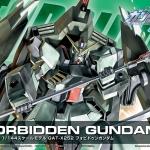 HG 1/144 R09 FORBIDDEN GUNDAM