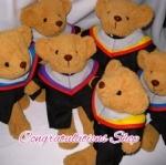 ตุ๊กตาหมีชุดครุย ของขวัญรับปริญญา ตุ๊กตาหมีรับปริญญา ม.ศรีนครินทรวิโรฒประสานมิตร ปริญญาตรี ไซด์ 14 นิ้ว