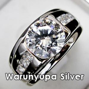 Showy Silver by Warunyupa
