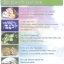 แผ่นอนามัยสำหรับทุกวัน thumbnail 9