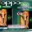 เคส oppo R9s pvc ลายวันพีช ภาพคมชัด มันวาว สีสดใส thumbnail 1