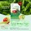 Ozee Flora Apple Fiber Chlorophyll โอซี ฟลอร่า แอปเปิ้ล ไฟเบอร์ คลอโรฟิลล์ 20 แคปซูล thumbnail 2