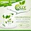 Colly Chlorophyll Fiber Plus คลอลี่ คลอโรฟิลล์ ไฟเบอร์ พลัส (15ซอง/กล่อง) thumbnail 4