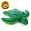 Giant Turtle thumbnail 1
