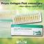 Bio PCT Fluid Concentrate (ไบโอ พี ซี ที ฟลูอิด คอนเซนเทรท) thumbnail 4