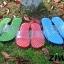 K017 **พร้อมส่ง** (ปลีก+ส่ง) รองเท้านวดสปา เพื่อสุขภาพ ปุ่มเล็ก สำหรับผู้หญิง ส่งคู่ละ 120 บ. thumbnail 1