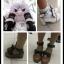 [พรีออเดอร์] รองเท้าโลลิต้า รองเท้าน่ารักๆ สำหรับสาวๆที่ชื่นชอบสไตล์โลลิต้าสุดชิค thumbnail 9
