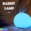 โคมไฟ Rabbit Lamp ลดเหลือ 340 บาท ปกติ 850 บาท thumbnail 1