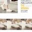 S280**พร้อมส่ง** (ปลีก+ส่ง) ถุงเท้าซ่อน ข้อเว้า ไซส์ชาย+หญิง มีซิลิโคนกันหลุด 12 คู่ต่อแพ็ค เนื้อดี งานนำเข้า(Made in China) thumbnail 8