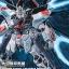 MG 1/100 Strike Freedom Gundam MECHANIC DESIGNER Okawara Kunio Exhibition Ver. thumbnail 1