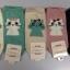 S601 **พร้อมส่ง** (ปลีก+ส่ง) ถุงเท้าแฟชั่น ข้อตาตุ่ม คละ 5 สี เนื้อดี งานนำเข้า มี 10 คู่ต่อแพ็ค thumbnail 1