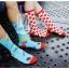 S250**พร้อมส่ง** (ปลีก+ส่ง) ถุงเท้าแฟชั่นเกาหลี ข้อยาว คละ 8 ลาย มี 12 คู่ต่อแพ็ค เนื้อดี งานนำเข้า(Made in China) thumbnail 14