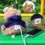 แบตสำรอง Power Bank ตุ๊กตาหมี KATE BEAR 6000 mAh ลดเหลือ 540 บาท ปกติ 890 บาท thumbnail 2