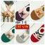 เซตถุงเท้าข้อสั้นลายแมวน้อยสุดน่ารัก thumbnail 1