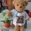ตุ๊กตาหมี พร้อมสกรีน 250 บ. thumbnail 7