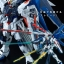 [P-Bandai] MG 1/100 Freedom Gundam Ver. 2.0 Full Burst Mode Special Coating Ver. thumbnail 2