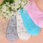 S345 **พร้อมส่ง** (ปลีก+ส่ง) ถุงเท้าแฟชั่นเกาหลี ข้อสั้น คละ 5 สี มี 12 คู่/แพ็ค เนื้อดี งานนำเข้า(Made in China) thumbnail 1