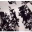 ชุดเดรสแขนกุด ผ้าซาตินเนื้อเงา พิมพ์ลายใบไม้สลับสีขาวและดำ เข้ารูปช่วงเอว thumbnail 9