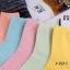 S363 **พร้อมส่ง** (ปลีก+ส่ง) ถุงเท้าแฟชั่นเกาหลี ข้อยาว คละ 5 สี มี 10 คู่/แพ็ค เนื้อดี งานนำเข้า(Made in China) thumbnail 9