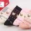 ถุงเท้าน่ารักในกล่องของขวัญ thumbnail 4