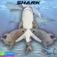 ตุ๊กตา ปลาฉลาม ราคา 199-525 บาท ปกติ 1,575 บาท thumbnail 1