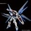 HG 1/144 Freedom Gundam (REVIVE) thumbnail 7
