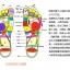 K017-RD **พร้อมส่ง** (ปลีก+ส่ง) รองเท้านวดสปา เพื่อสุขภาพ ปุ่มเล็ก สำหรับผู้หญิง สีแดง ส่งคู่ละ 120 บ. thumbnail 4