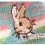 ถุงเท้ากระต่ายน้อย Preter Rabbit thumbnail 2