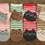 S276**พร้อมส่ง** (ปลีก+ส่ง) ถุงเท้าแฟชั่นเกาหลี ข้อยาว ลายแมว เนื้อดี งานนำเข้า(Made in China) thumbnail 5