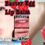 Easter egg ลิปบาล์ม เอสเตอร์ รูปทรงไข่ จากประเทศเกาหลี แท้ made in korea thumbnail 1