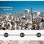 S335**พร้อมส่ง** (ปลีก+ส่ง) ถุงเท้าแฟชั่นเกาหลี ข้อยาว คละ 5 สี มี 10 คู่/แพ็ค เนื้อดี งานนำเข้า(Made in China) thumbnail 11