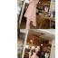 ชุดเดรสสั้น DRESS ชุดเดรส ผ้าซีฟอง คงรูปและทิ้งตัวดี โทนสี APRICOT มีซับใน ใส่ทำงาน ใส่เที่ยวได้ (พร้อมส่ง) thumbnail 4