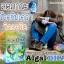 Ausway smart ALGAL DHA แพ็ค 3 กระปุก อัสเวย์ สามร์ท แอลเกิล ดีเอชเอ บำรุงสมองสำหรับเด็ก แพ็ค 3 กระปุก thumbnail 6