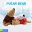 ตุ๊กตา หมีขั้วโลกใส่เสื้อ ราคา 570 บาท ปกติ 1,710 บาท thumbnail 1