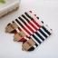 เซตถุงเท้าข้อสั้นด้านหลังติดโบว์น่ารัก คละสี 3 คู่ 125 บาท thumbnail 2