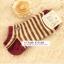 (หมด) ถุงเท้ากระต่ายน้อย Preter thumbnail 8