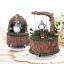 กล่องเพลงหมุนได้ สูง16cm Tree02 thumbnail 1