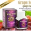 Toplife Grapeseed 24000 MAX 180 solfgel ส่งฟรี EMS thumbnail 1